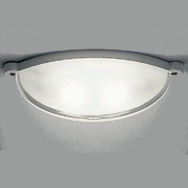 The Mitasi 36 t.s. outdoor wall sconce/ceiling light