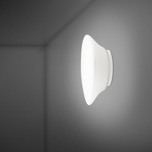Lumi F07 G17 Mycena Wall/Ceiling Light